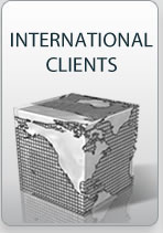 International Clients of Martinovsky Law Firm